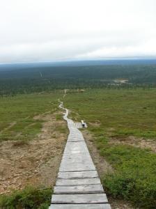 Näkymä Kiilopäältä
